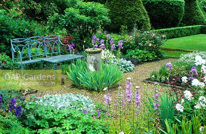 Formal garden with blue painted wrought iron bench, old sundial, gravel paths, roses and planting of Campanula latiloba 'Hidcote Amethyst', Stachys byzantina, bearded irises, Astrantia 'Hadspen Blood' and view to lawns with box hedging and Yew topiary -  Cerne Abbas, Dorset