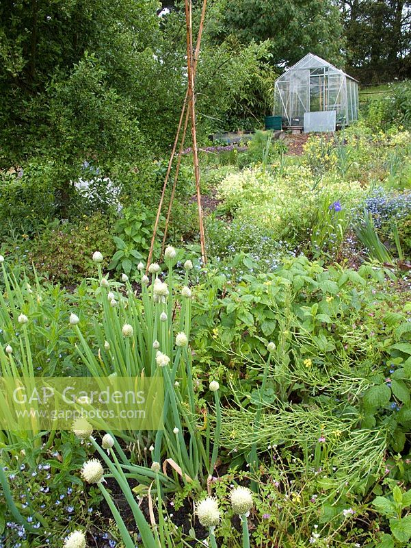 Tapeley Parks permaculture garden