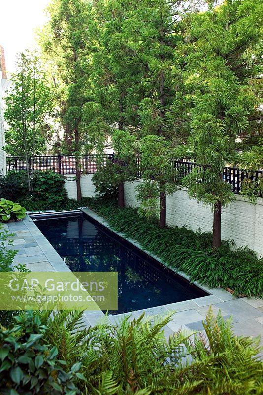 Marvelous Rectangular Pond In The Knight Garden, A Modern City Garden