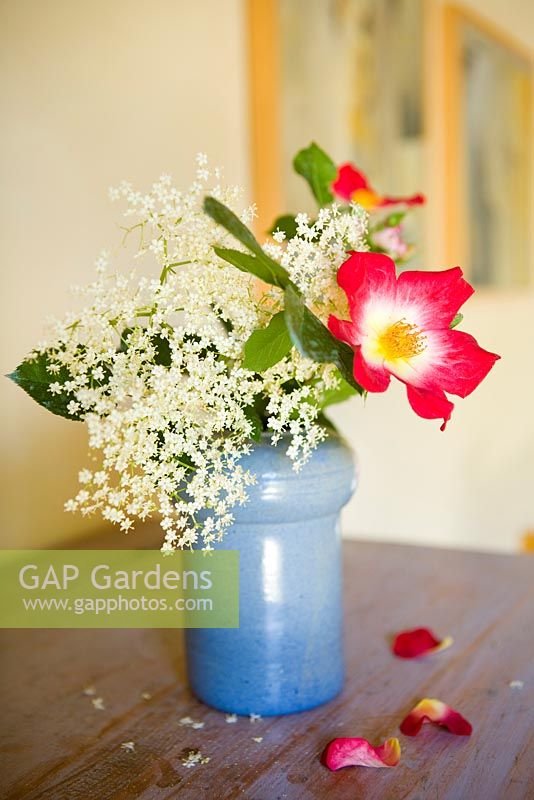 Gap Gardens Rose And Elder Flowers In Vase On Table Image No