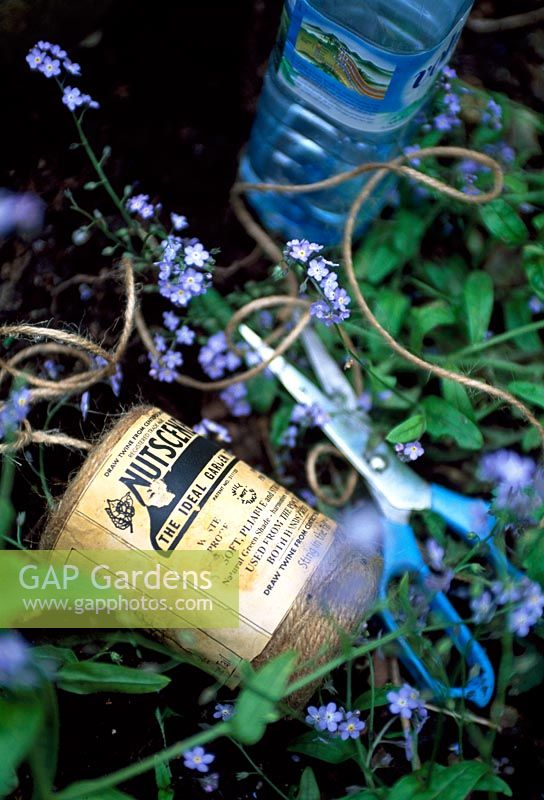 Garden twine, blue scissors and forget-me-nots