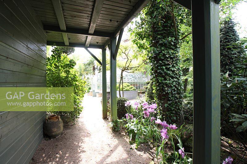 GAP Gardens - Veranda with borders of Tulipa \'Blue Parrot\'and shaped ...