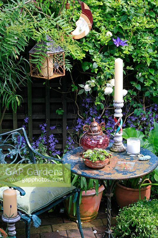 Carol S Garden: Carol's Secret Garden