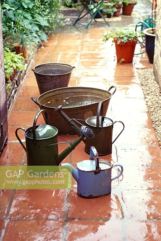 Watering cans and galvanised tubs left out to collect rain water
