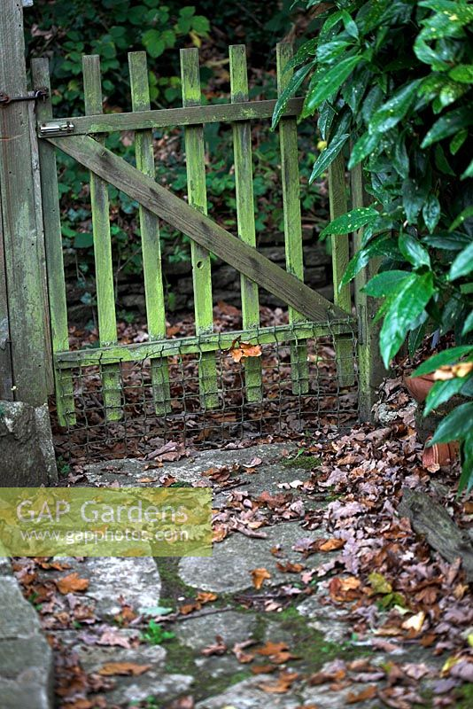 Old Wooden Garden Gate And Autumn Leaves On Pathway