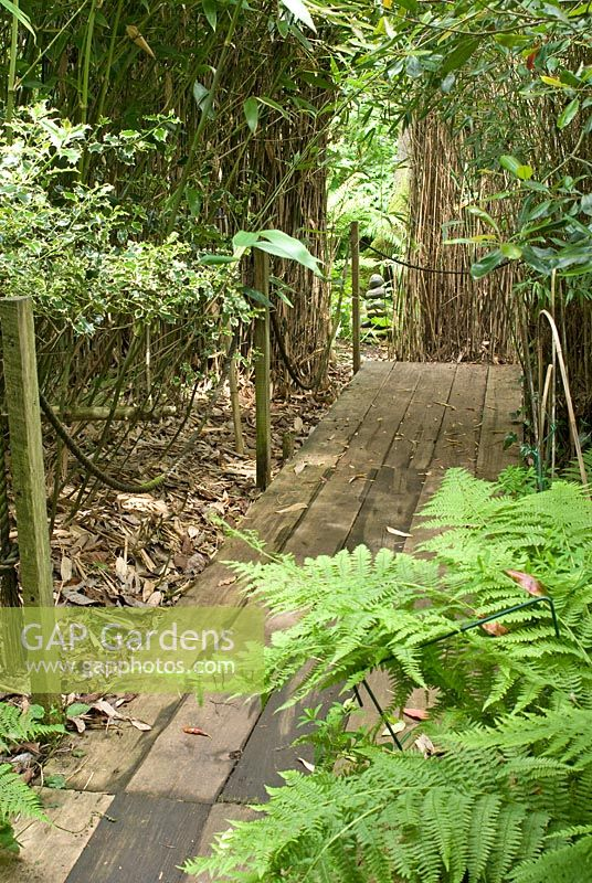 gap gardens boardwalk leading through bamboo grove montford cottage lancashire image no