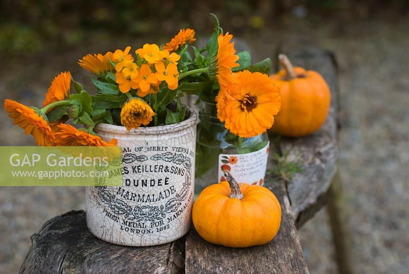 Gourds, marigolds and wallflowers