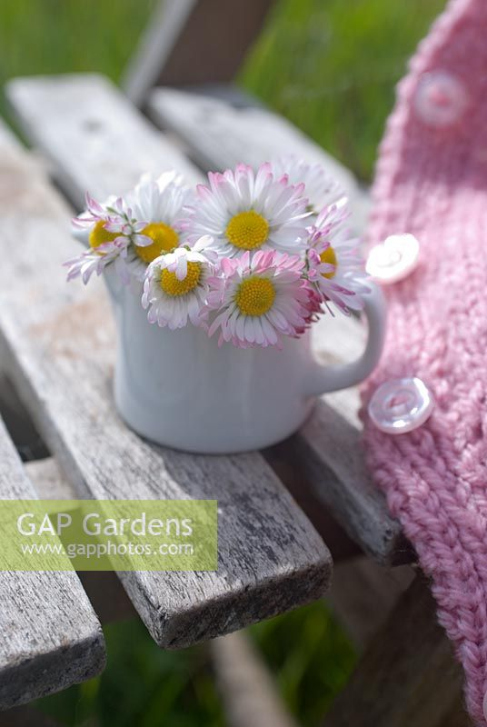 Daisies and pink child's cardigan on rustic seat