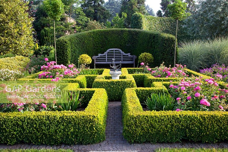 Roses growing in Buxus- Box parterre with sundial and bench backed by Taxus hedge