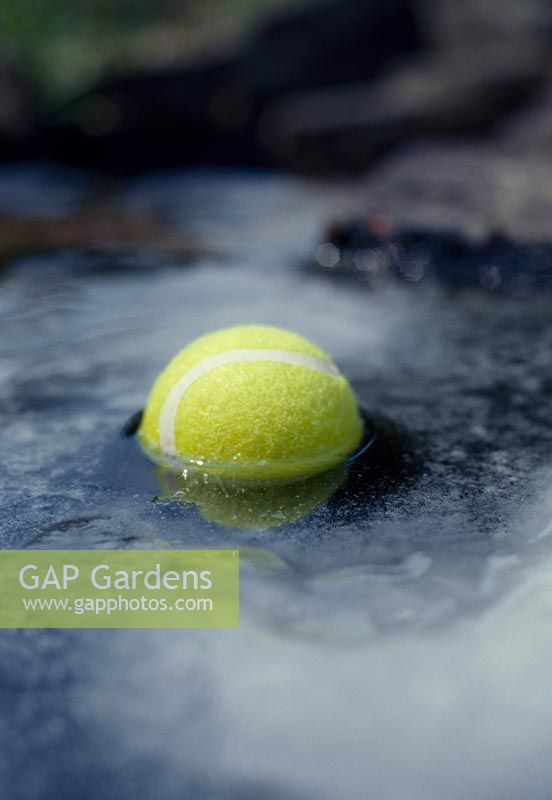 Pond care. Place a tennis ball in the pond. The movement of it with stop the water from completely freezing over.
