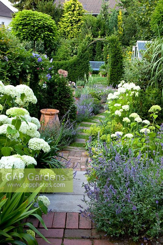 Steps between flowerbeds, planting includes Nepeta and Hydrangea 'Annabelle'
