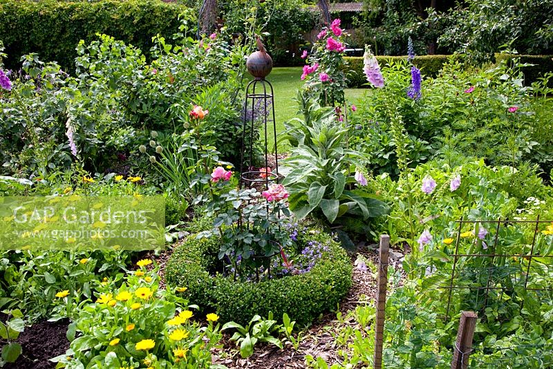 Gap Gardens Small Parterre In Cottage Garden With Clipped Buxus