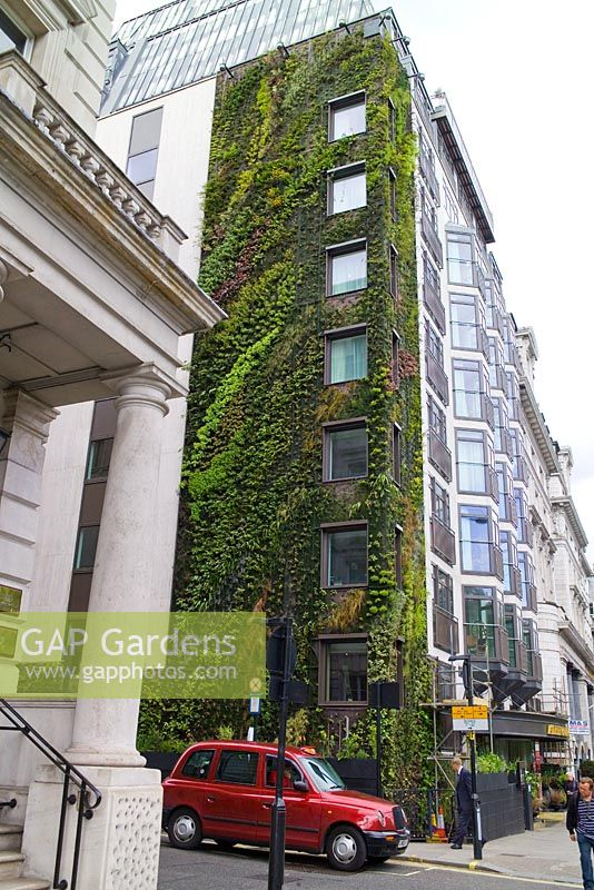 gap gardens living wall by patrick blanc at the. Black Bedroom Furniture Sets. Home Design Ideas
