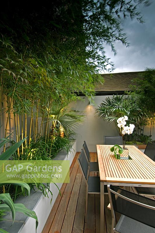 Small urban courtyard garden. Bamboo in raised bed. Dining area with Orchid on table. Bermondsey, London, UK