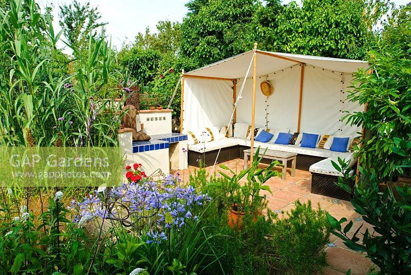 Moroccan style tent to create secluded summer seating. Agapanthus, Arundo donax in border