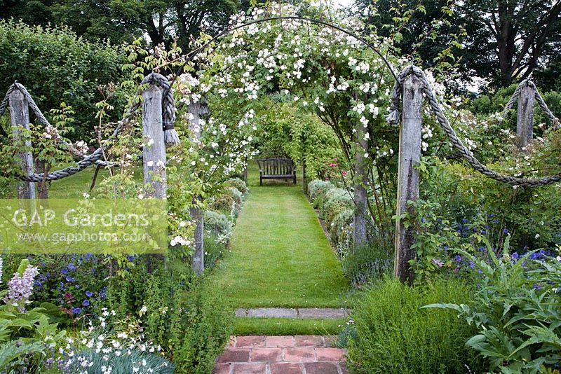 GAP Gardens - Pergola with Rosa \'Dundee Rambler\' leading to seat ...