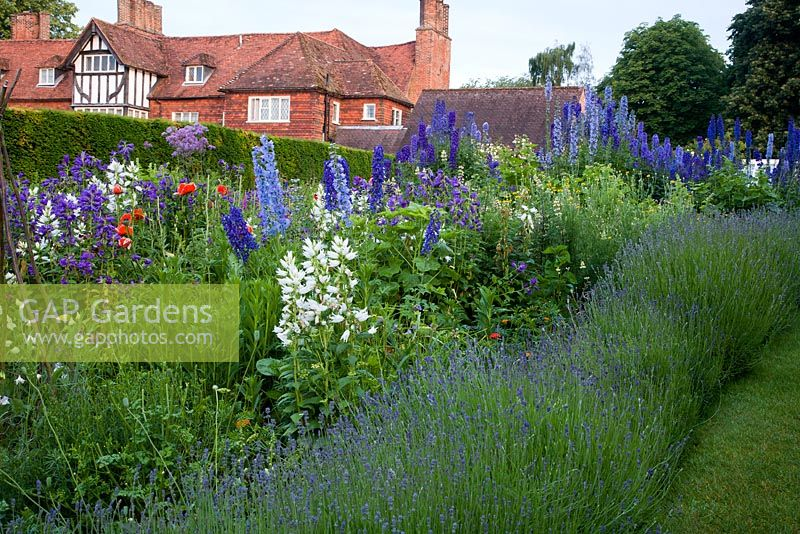 GAP Gardens - The Manor House, Upton Grey - Feature by Abigail Rex ...