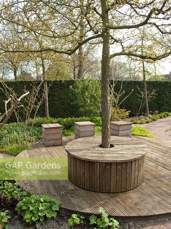 Gap gardens circular deck with seat around tree trunk for Circular garden decking