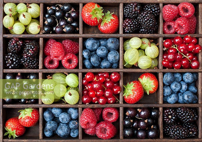 English summer berries in a wooden grid pattern