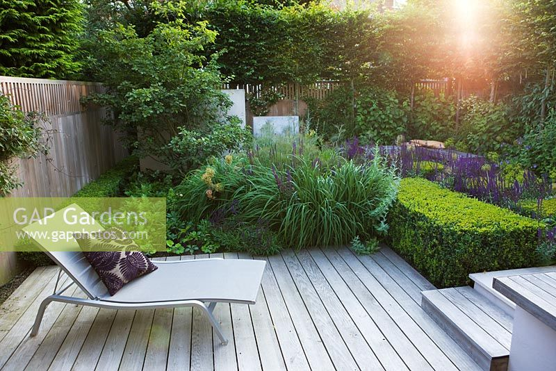 Small Urban Garden With Lounger On Decking And Clipped Topiary Cubes. London