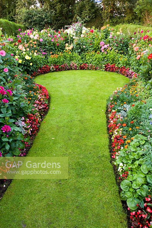 GAP Gardens - Lawned path between borders with Dahlias and bedding ...