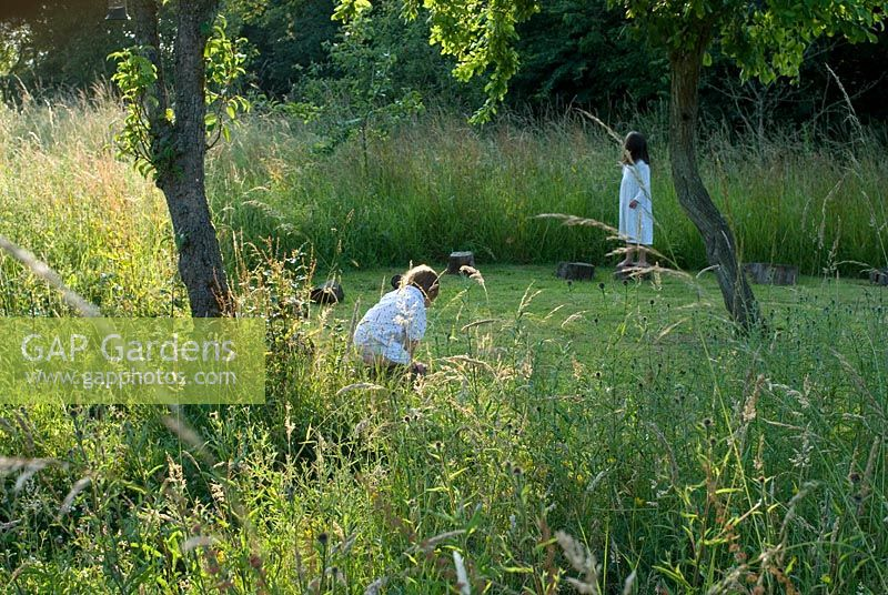 Mown 'crop circle' with logs for children to sit and walk on. Long grass surrounding the fruit trees in the orchard in the evening light - Heveningham, Suffolk