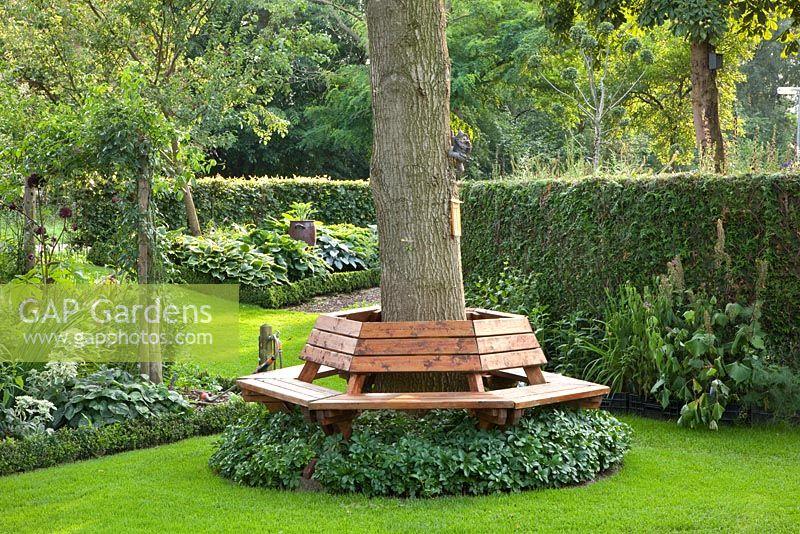 Gap gardens bench around tree trunk image no 0218139 for Tree trunk garden bench