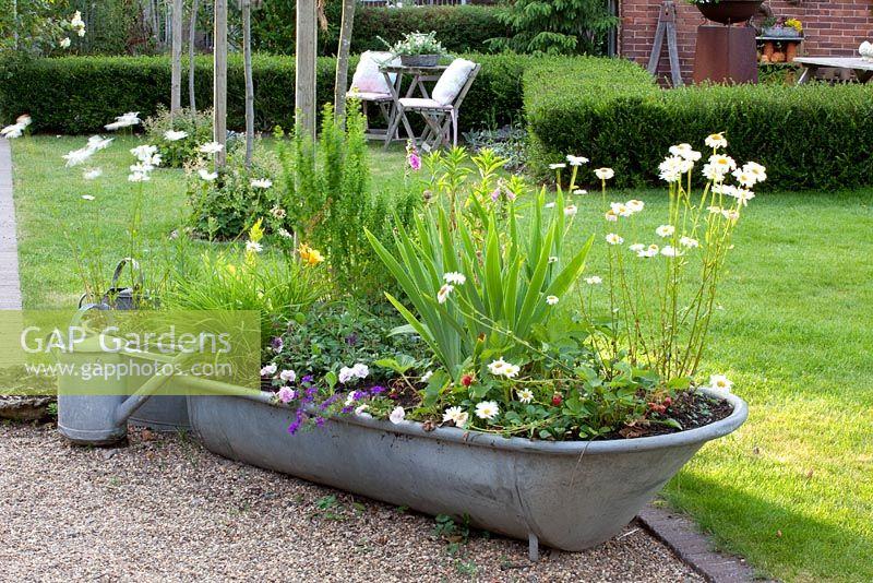 Tin Bath Planter - Garden Design Ideas Garden Planters Norwich on vermont garden, newcastle garden, amsterdam garden, paris garden,