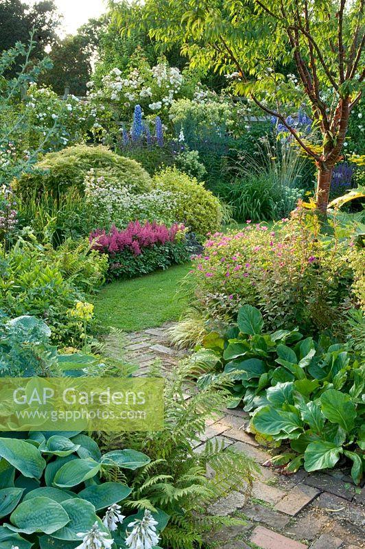 Traditional English Cottage Garden With Brick Path Between Shady Borders Of Prunus Serrula