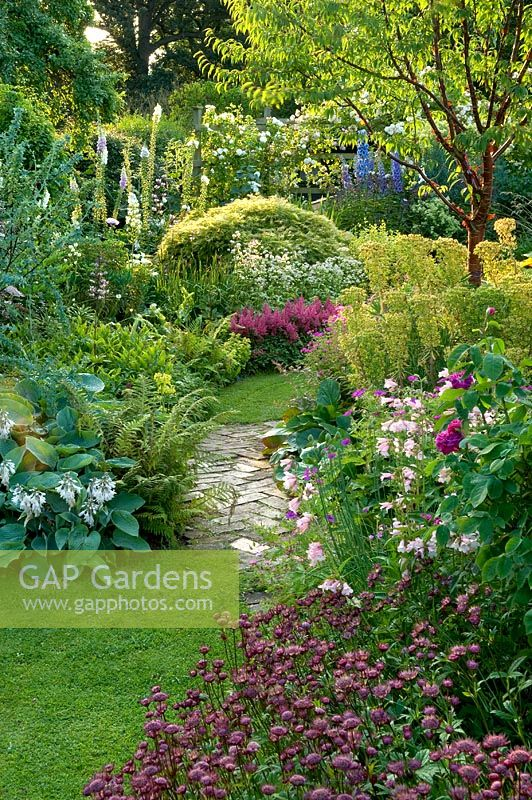 Traditional English Cottage Garden With Brick Path Between Shady Borders Of Prunus Serrula