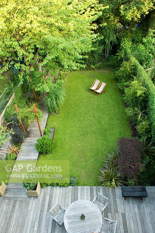 Overview of small urban garden with wooden decked pathway and patio, container with Pinus and metal arch with Passiflora - Highgate, London