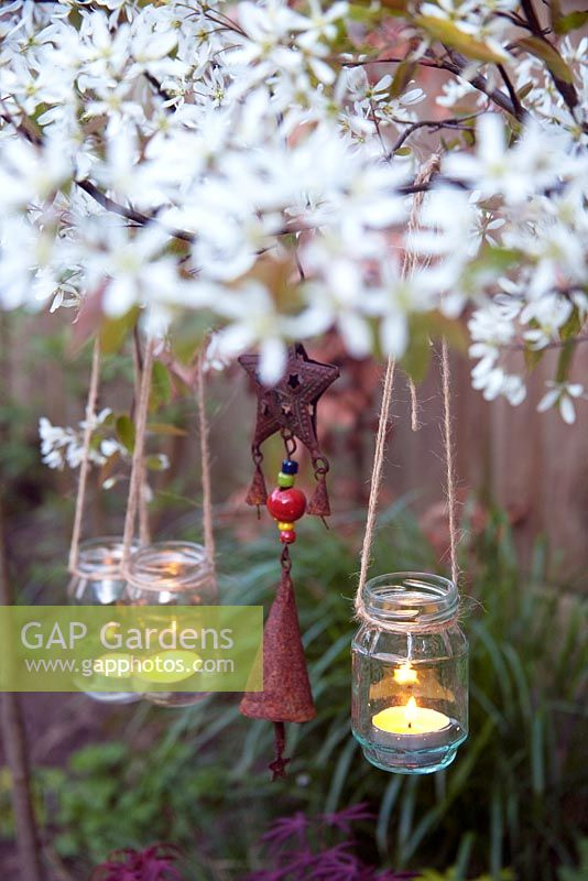 Tealights in jars hanging from a pleached Amelanchier lamarckii.