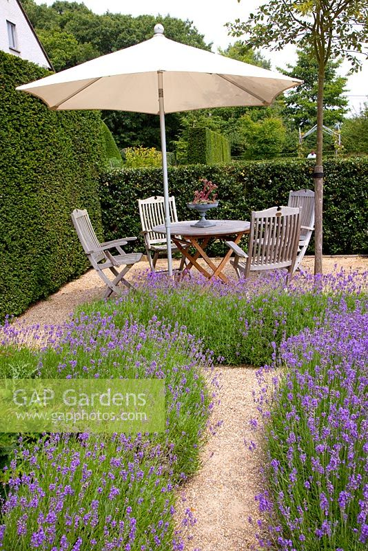 Gap gardens gravel path to seating area in garden with for Garden seating areas