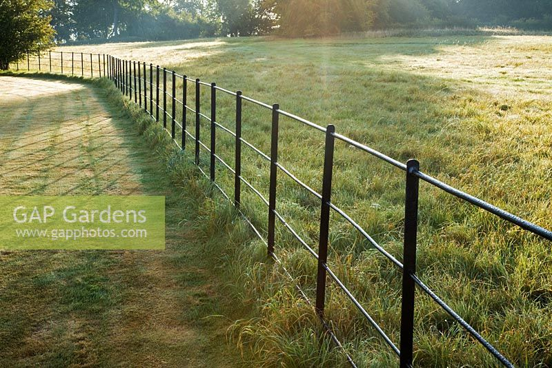 Black iron estate fencing bordering a paddock in Summer