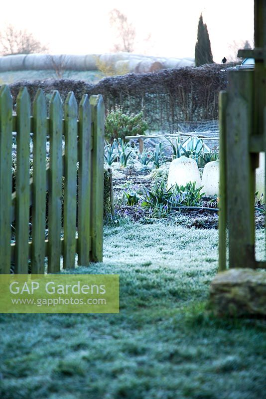 Wooden gateway leading in vegetable garden - Chapel Street