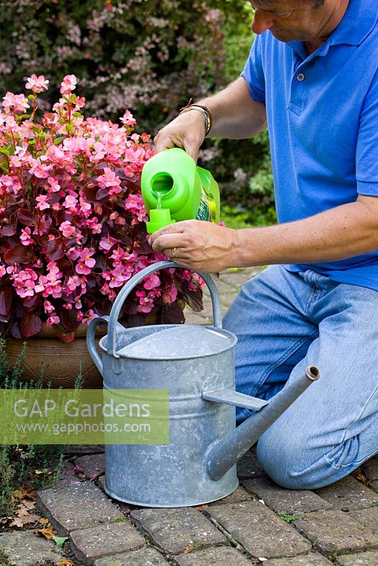 Gap Gardens Adding Liquid Feed To A Watering Can For