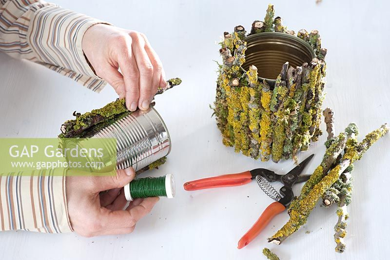 GAP Gardens - Decorating tin cans with lichen covered branches ...