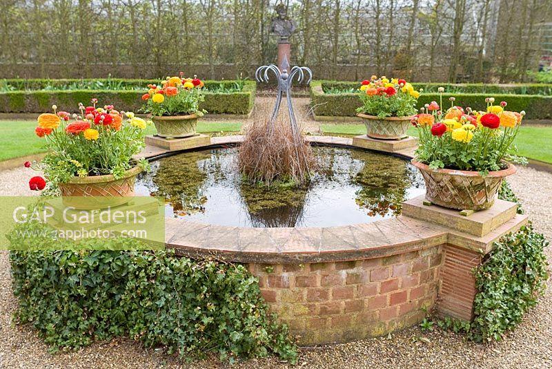 Gap gardens raised garden pond with ranunculus in pots for Raised pond design ideas