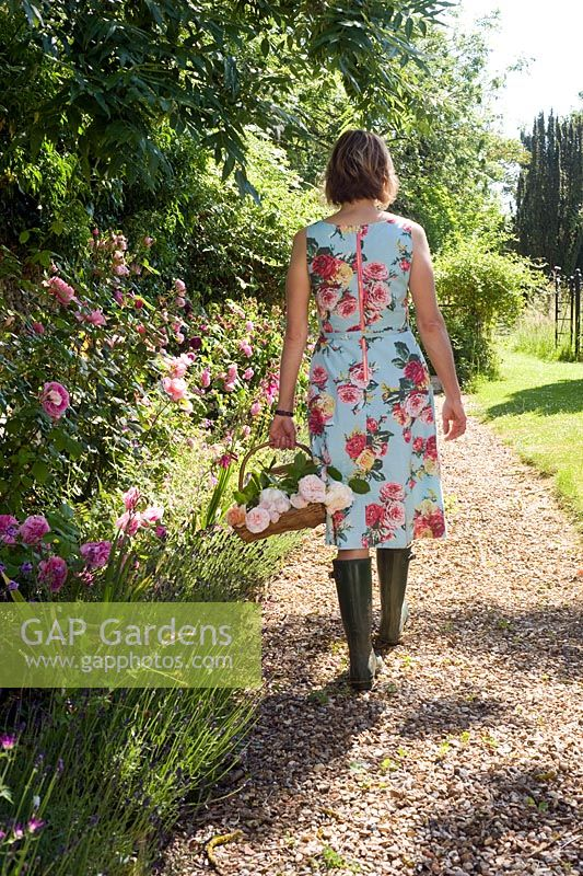 Woman in floral dress walking in country garden with wooden trug of roses