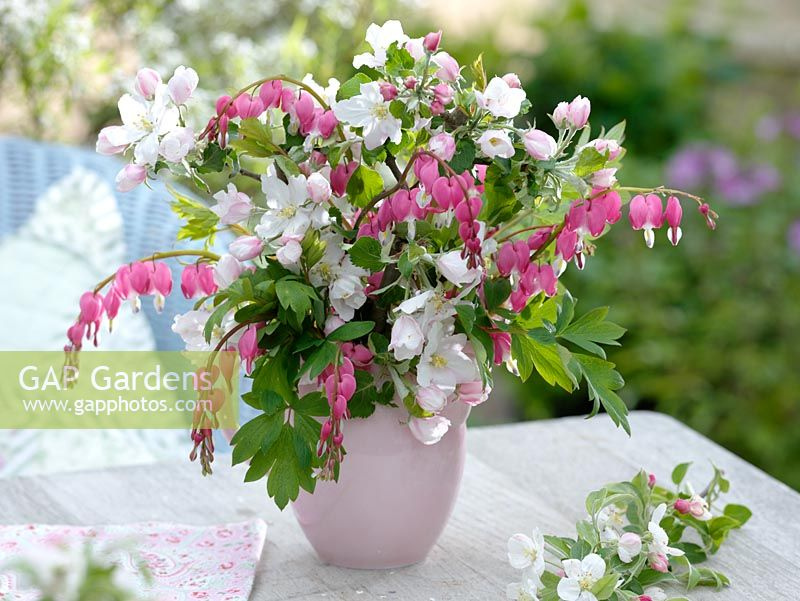 GAP Gardens - Spring bouquet of Dicentra - Bleeding Heart and Malus ...