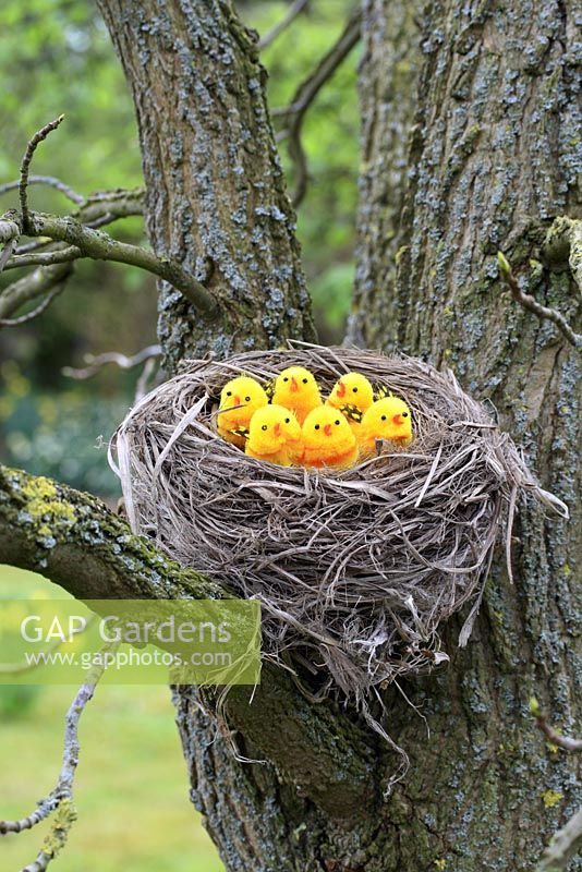 Artificial birds in nest in tree