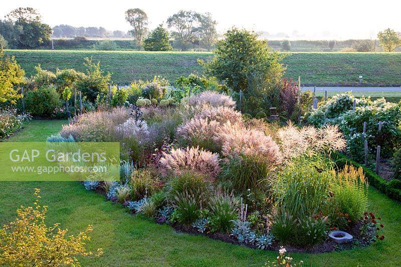 Gap gardens overview of ornamental grass border in full for Ornamental grass border