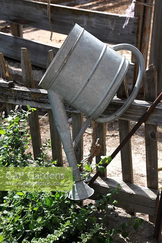 Zinc watering can hanging on wooden fence