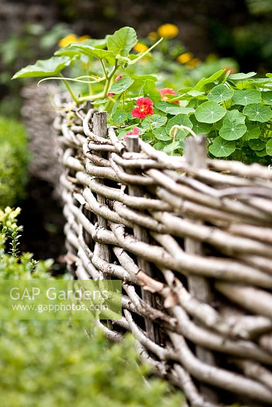 Decorative Salix - Willow edging in the Kitchen Garden at Gresgarth Hall, Lancashire