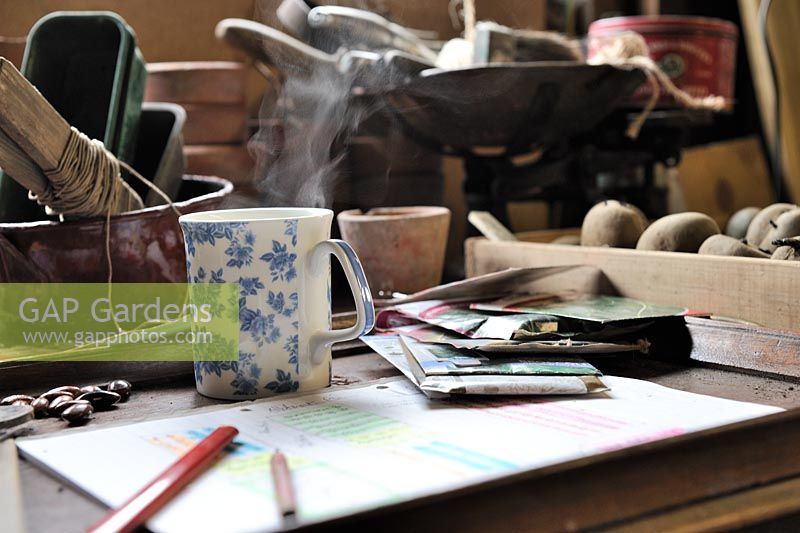 Gardeners potting shed desk, with steaming coffee mug, garden tools and items, Norfolk, UK, March