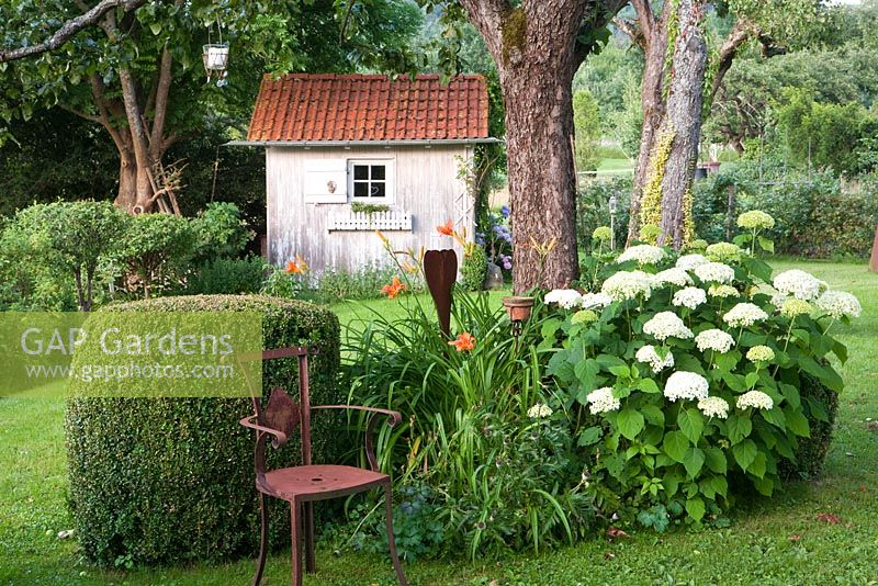 Tool shed, Hermeocallis, Buxus sempervirens, Hydrangea arborescens 'Anabelle' with rusted metal chair