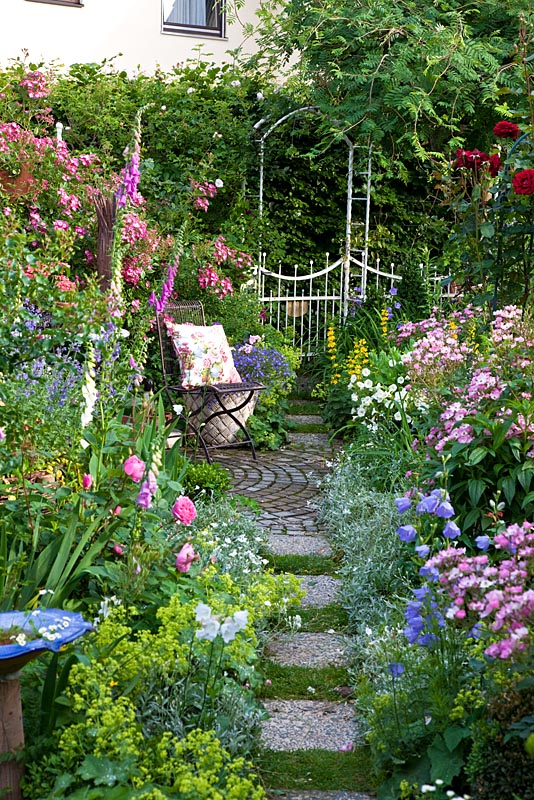 Small Cottage Garden With Metal Chair And Cushion On Circular Patio Path Through Borders Of Rosa Ballerina Mozart Campanula Persicifolia