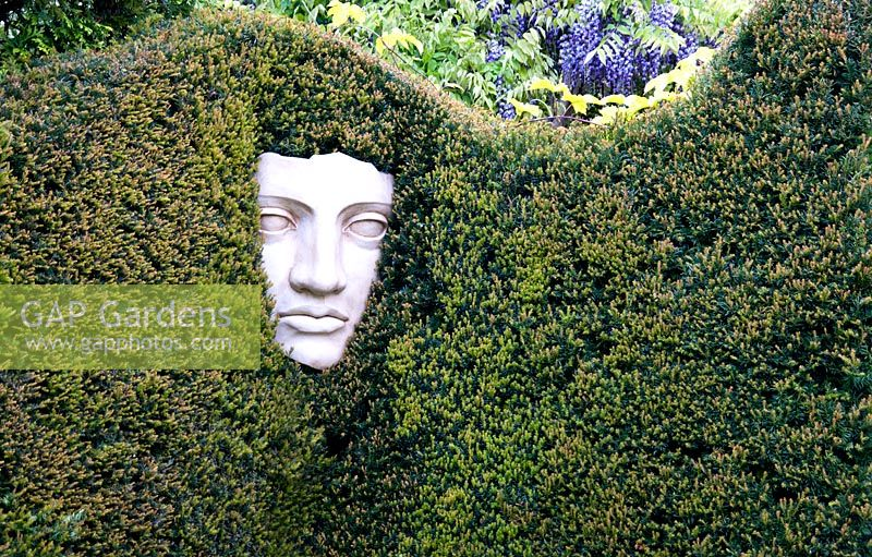 Classical Face Sculpture In Yew Hedge, Tilford Cottage, Surrey