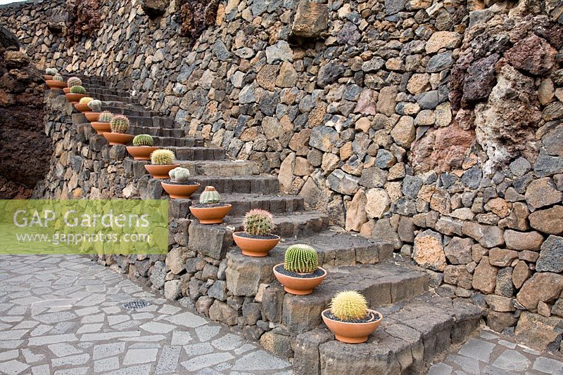 Lava stone steps, edged with clay pots planted with Cacti variety, including Ferocactus - El Jardin de Cactus, Lanzarote, Canary Islands.