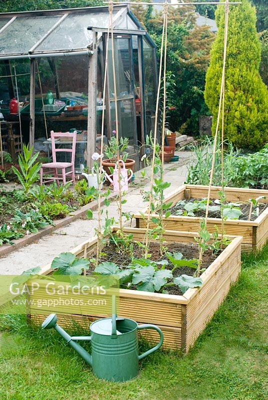 Garden view with Veg Beds